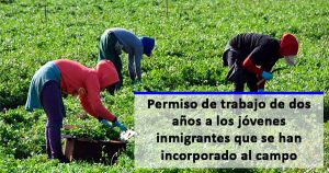 El Gobierno concederá un permiso de trabajo de 2 años a inmigrantes