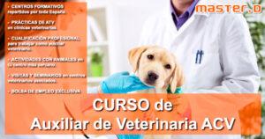 Nuevo Curso de Auxiliar de Veterinaria ACV en MasterD