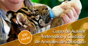 Curso de Auxiliar Veterinario y Cuidador de Animales de Zoológico