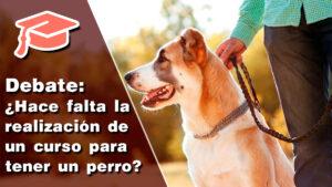 ¿Crees que es necesaria la realización de un curso para tener un perro?